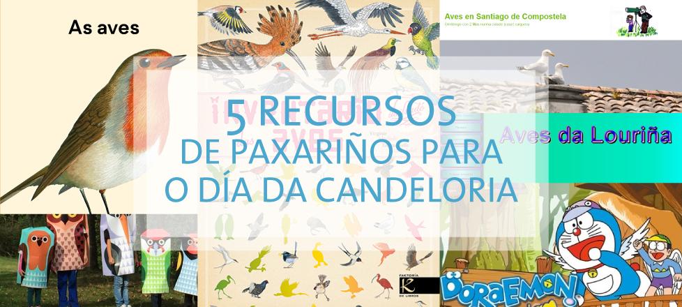 5 Recursos de paxariños para o día da Candeloria
